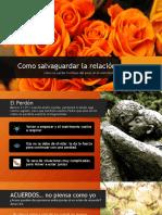 Como salvaguardar la relacion.pdf