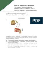 NIVELACION PRIMER PERIODO.docx