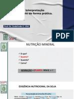 Interpretação-de-análise-de-solo.pdf