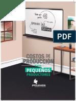 Costos de Producción Cerdos.pdf
