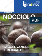 Nocciolo-Supplemento-a-TV-5.2017 (1).pdf