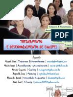 treinamentoedesenvolvimentodeequipes-100922205127-phpapp01