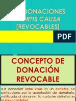 Donación Mortis Causa [O Revocable] - Ruiz