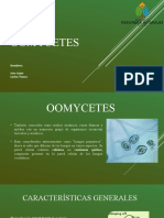 Presentación fitopatología