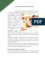 315732161-Terapia-Ocupacional-en-El-Adulto-Mayor.docx
