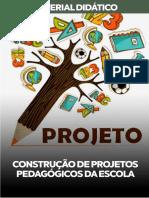 05 CONSTRUÇÃO-DE-PROJETOS-PEDAGÓGICOS-DA-ESCOLA.pdf