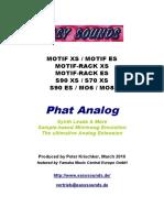 MOTIF_Phat Analog E
