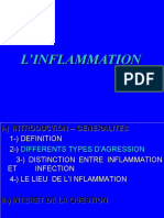 L'INFLAMMATIO'N.ppt