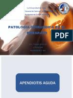 PATOLOGIA QUIRURGICA EN EL EMBARAZO.ppt