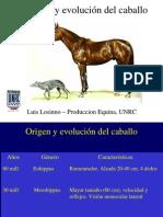 02-Origen y Evolucion Caballo