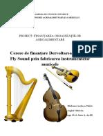 CerereFinanțare_BăideanuAnghel_1324