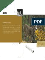 Bushnell 2003 Catalog