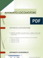 APPARATO LOCOMOTORE.pdf