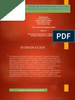 Tarea4_Planes de Intervenciones colectivas_G13.pptx
