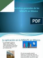 Características generales de las MMyPE en México