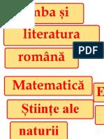 titlurile-panourilor.docx