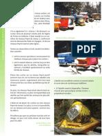 geobiologie-apiculture
