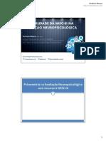 Wisc-III - Manual (1)