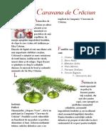 revista editia II