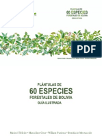 Plantulas de 60 sp forestales
