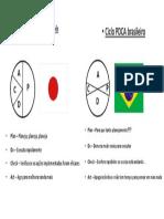 PDCA - Japão x Brasil