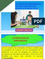 ESTRATEGIAS-DE-APRENDIZAJES 2019