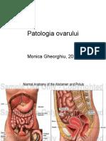 patologia ovarului