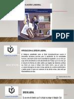 CARACTERÍSTICAS DEL D. LABORAL