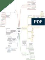 Mapa Conceptual_Organizacion y Estructura Curricular