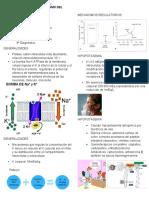 Fisiopatología y semiología k.docx