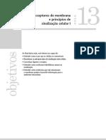 5- Sinalizacao celular 1