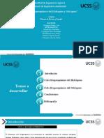 Ciclo biogeoquímico del Hidrogeno y Nitrógeno (1).pptx