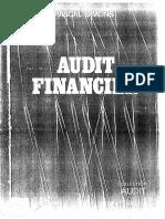 Rappotr audit1