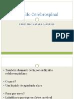 liquidocerebrospinal.pdf