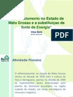 Reflorestamento em MT e substituicao fonte energia
