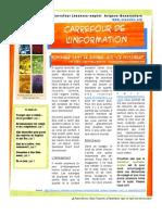 Carrefour de l'information_février2011