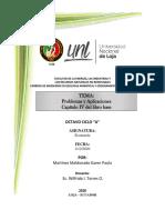 KarenMartínez_Problemas de aplicación Cap4_Economía