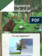 Adaptarea animalelor la habitate