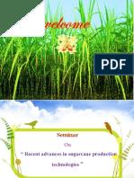 Recent advances in sugarcane production technologies.ppt