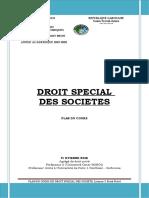 PLAN DROIT SPECIAL DES SOCIETES 2020.doc