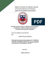 Perfil Noel Pocoaca Huanca
