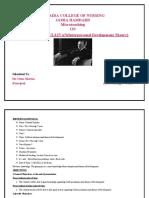 lesson plan on sullivan theory.docx