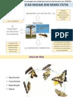 5. Características gerais dos seres vivos