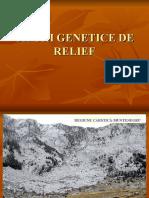 tipuri genetice de relief -imagini.ppt