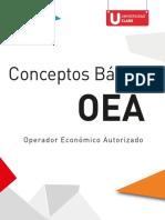 Conceptos Básicos OEA