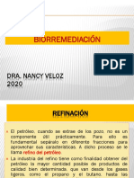 P2.6_Petroleo 2020 1,1