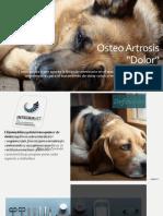 Artrosis - Veterinaria