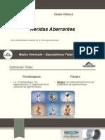 Heridas_Aberrantes