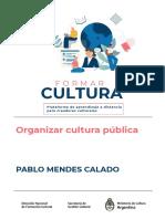 Organizar_Cultura_Publica_-_Pablo_Mendes_Calado_rpTqvCa (1).pdf