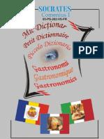 Mic dictionar gastronomic roman francez italian